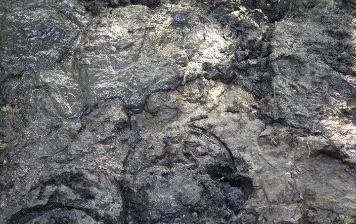 污泥處理壓濾機壓榨工藝的三個階段